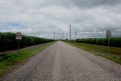 Camino del bastón de Suger Imagenes de archivo
