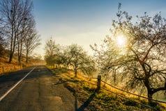 Camino del campo en última niebla del otoño en la salida del sol Foto de archivo