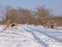 Camino del campo en el invierno Foto de archivo libre de regalías