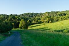 Camino del campo por tarde del verano tardío Fotografía de archivo libre de regalías