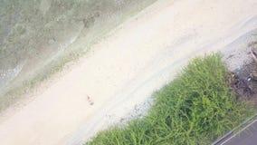 Camino del coche de la visión superior a lo largo de la playa y de la agua de mar que salpican en orilla arenosa Mujer de relajac almacen de metraje de vídeo