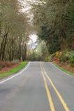 Camino del condado imagen de archivo