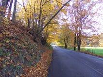 Camino del condado de la caída Fotos de archivo libres de regalías