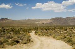 Camino del desierto Imagen de archivo libre de regalías