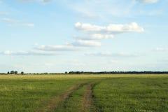 Camino del desierto al horizonte Fotos de archivo