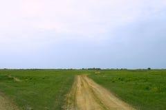Camino del desierto al horizonte Fotos de archivo libres de regalías