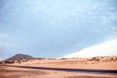 Camino del desierto en la isla de Fuerteventura Fotos de archivo