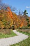 Camino del enrollamiento con colores de la caída Imagen de archivo