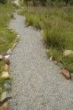 Camino del guijarro en jardín salvaje Fotografía de archivo