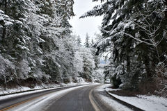 Camino del invierno Fotografía de archivo