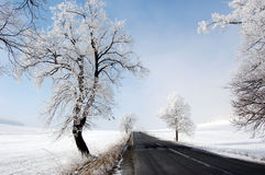 Camino del invierno Imagenes de archivo