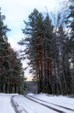 Camino del invierno Foto de archivo