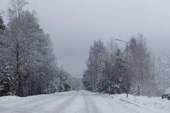 Camino del invierno Imágenes de archivo libres de regalías