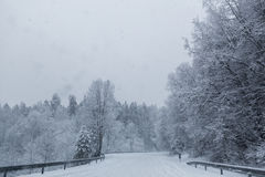Camino del invierno Fotografía de archivo libre de regalías