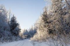 Camino del invierno cerca de la puesta del sol Imagen de archivo