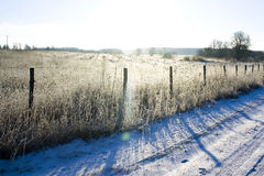 Camino del invierno con una cerca rural cerca de la madera Imágenes de archivo libres de regalías