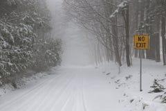 Camino del invierno durante tormenta de la nieve Foto de archivo libre de regalías