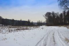 Camino del invierno en el bosque Foto de archivo libre de regalías