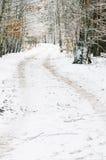 Camino del invierno en el bosque cubierto con nieve Imagen de archivo libre de regalías