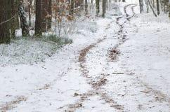 Camino del invierno en el bosque cubierto con nieve Foto de archivo libre de regalías