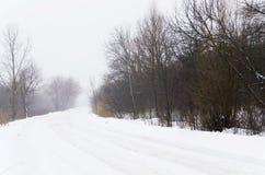 Camino del invierno en el bosque de la niebla Fotografía de archivo