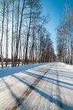 Camino del invierno en el bosque ruso en un día soleado claro Imagen de archivo