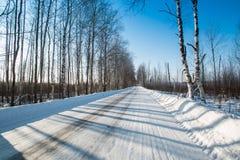 Camino del invierno en el bosque ruso en un día soleado claro Imagen de archivo libre de regalías