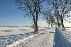 Camino del invierno en el campo Foto de archivo
