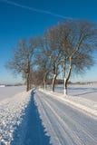 Camino del invierno en el campo Fotografía de archivo libre de regalías