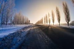 Camino del invierno en el sol de la tarde Fotografía de archivo libre de regalías