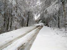 Camino del invierno en Rusia Imagen de archivo libre de regalías