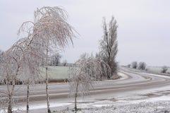 Camino del invierno que se va detrás de la vuelta y de los abedules helados Imagen de archivo