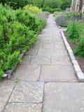 Camino del jardín Fotografía de archivo