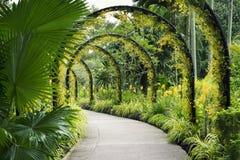 Camino del jardín botánico Imágenes de archivo libres de regalías