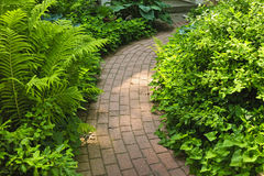 Camino del ladrillo en jardín ajardinado Fotografía de archivo