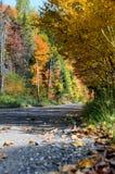 Camino del otoño Imágenes de archivo libres de regalías