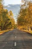 Camino del otoño a lo largo de campos de trigo de invierno Foto de archivo libre de regalías