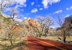 Camino del parque nacional de Zion (Utah, los E.E.U.U.) Fotografía de archivo libre de regalías
