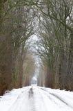 Camino del pueblo del invierno Foto de archivo libre de regalías