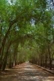 Camino del pueblo en Jedda foto de archivo libre de regalías