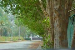 Camino del pueblo en Jedda imagen de archivo