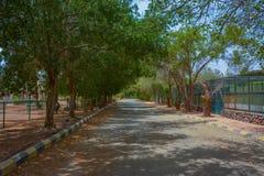 Camino del pueblo en Jedda fotografía de archivo