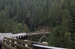 Camino del puente a través del bosque imagen de archivo