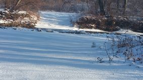 Camino del río Fotos de archivo libres de regalías