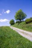 Camino del resorte Imagen de archivo libre de regalías