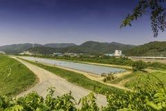 Camino delante del cultivo del invernadero Foto de archivo