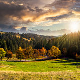 Camino detrás del bosque del otoño en la puesta del sol Imagen de archivo libre de regalías