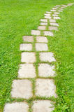 Camino embaldosado del jardín Imagen de archivo libre de regalías