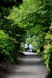 Camino en Bodnant Imagen de archivo libre de regalías