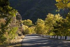 Camino en bosque del otoño Foto de archivo libre de regalías
